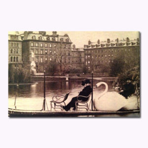 Swan Boats Sepia Magnet